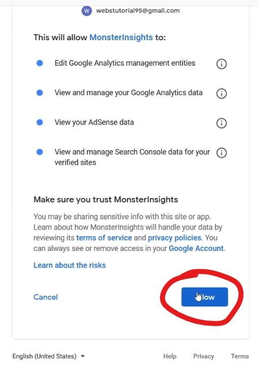 Google Analytics Allow